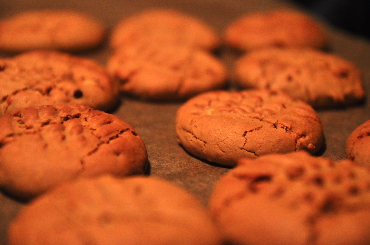 Peanut Butter Cooooooookies!