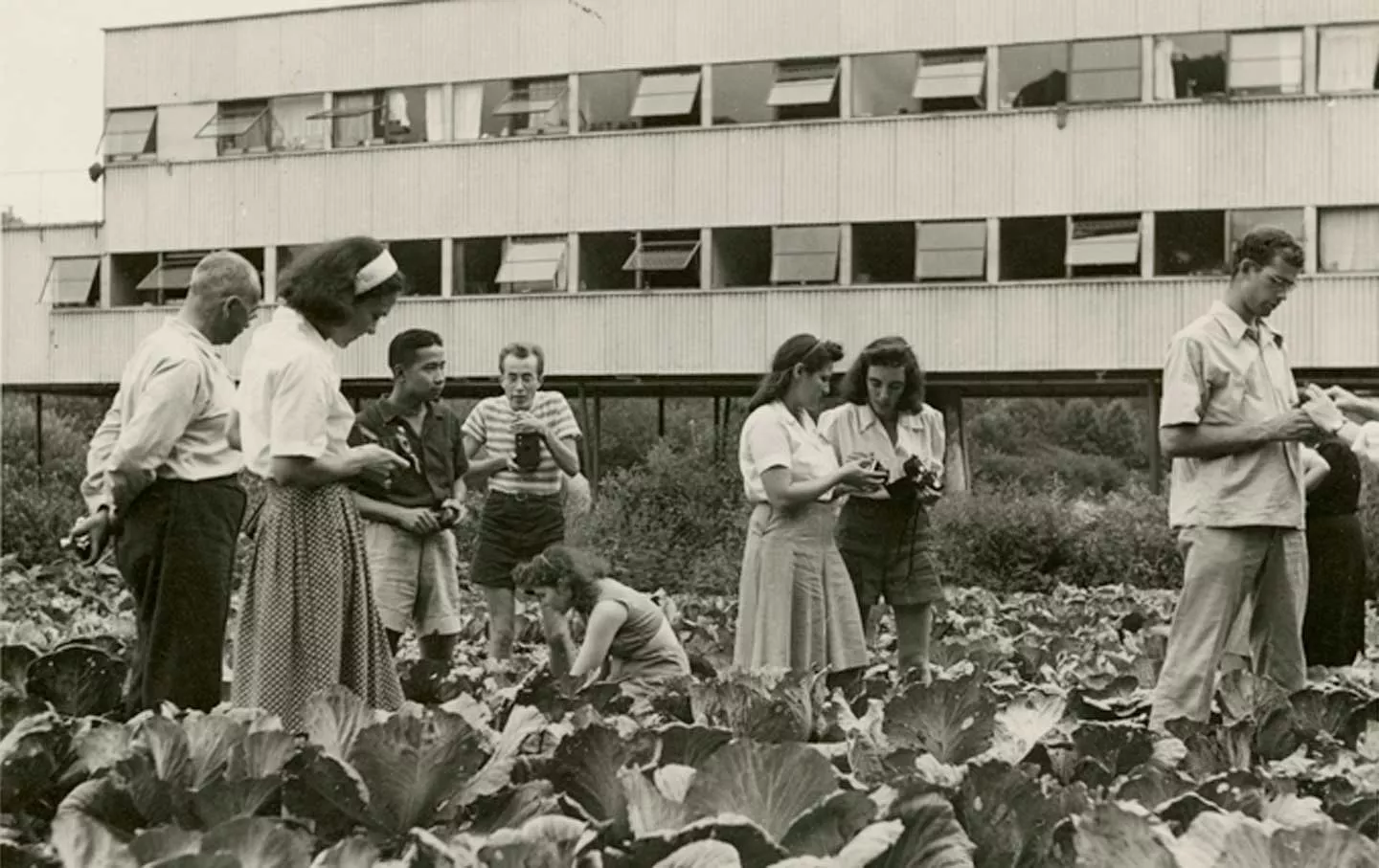 Photography class in a cabbage patch at Black Mountain College. Photography by Barbara Morgan. Courtesy Western Regional Archives, State Archives of North Carolina.