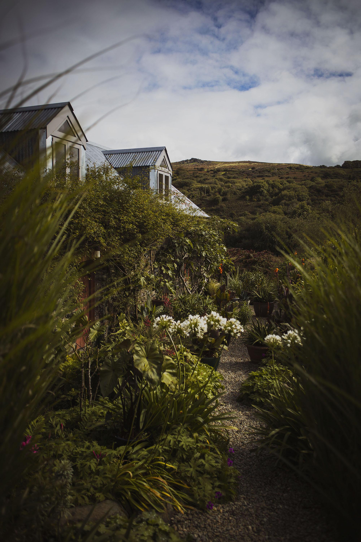 dyffryn fernant gardens in pembrokeshire