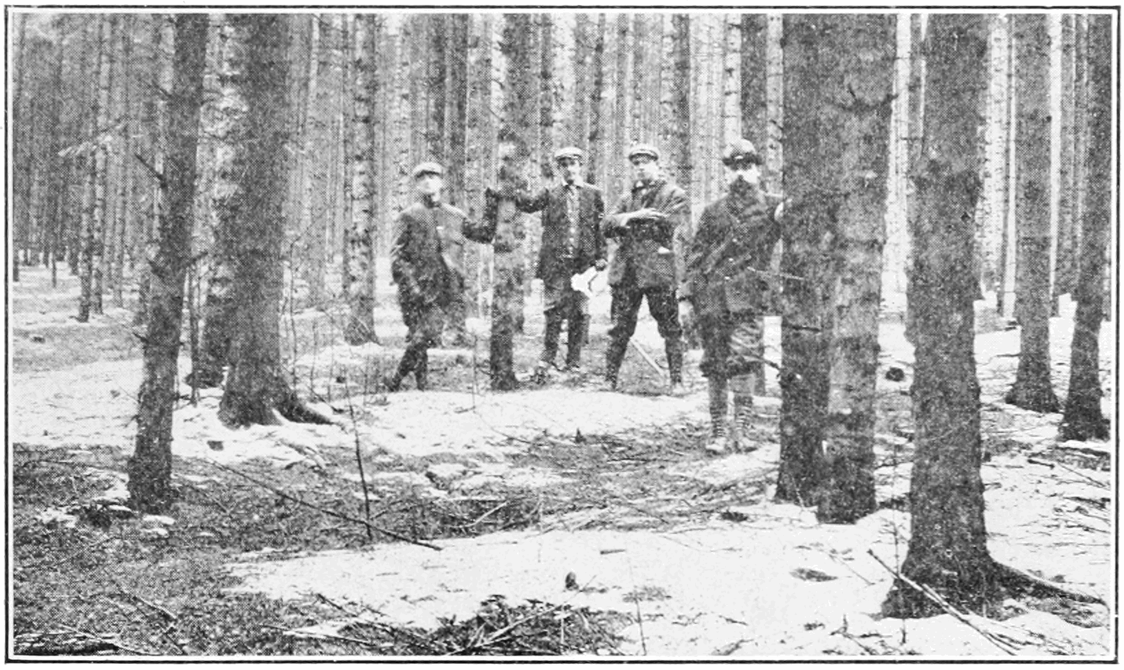 German foresters standing in a planted forest in 1913. Early German foresters planted neat rows of one or two species of trees to make it easier to keep track of and harvest timber. In doing so, however, they reduced biodiversity and made their forests more vulnerable to pests and disease. They also eliminated other trees and plants that had value to local communities for uses other than timber. When we focus only on making things legible, we risk sacrificing usefulness for legibility and doing long-term harm. (See Scott, Chapter 1.)