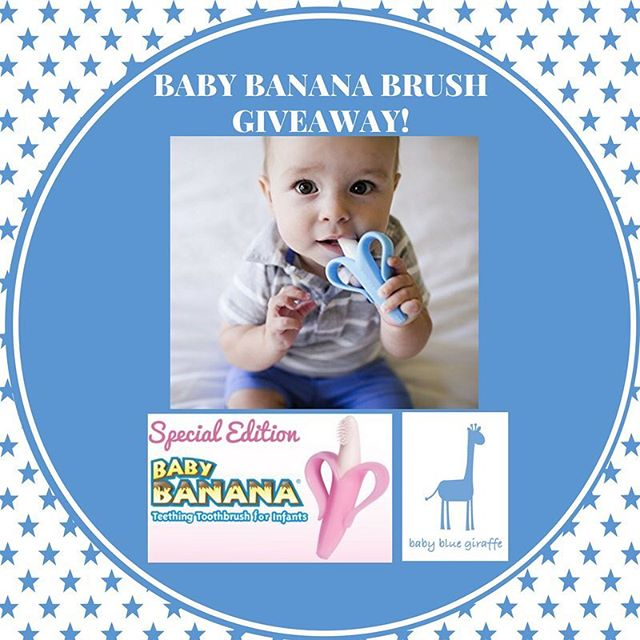 *Baby Banana Brush Giveaway Today!* Follow their page @babybananabrush and comment below to enter. One lucky follower will win a baby blue giraffe nail file and a baby banana brush! Specify if you prefer blue or pink. Same giveaway coming soon on Facebook too so you can enter twice if you follow on both platforms!