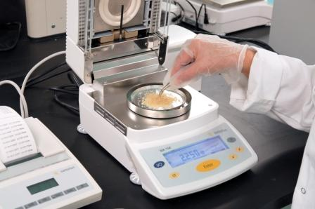 Testing samples on a moisture analyzer.