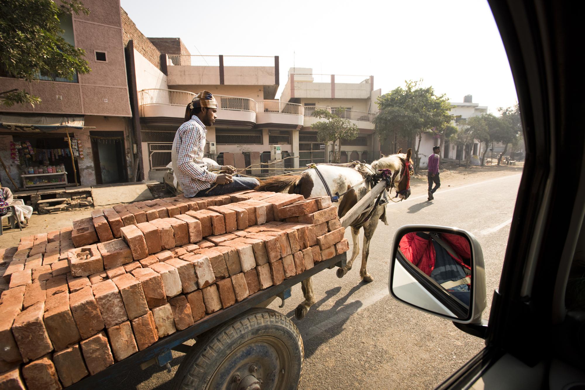 Agra-7254.jpg
