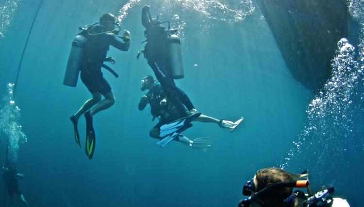 diving_catalina+retreats_panama+m.png