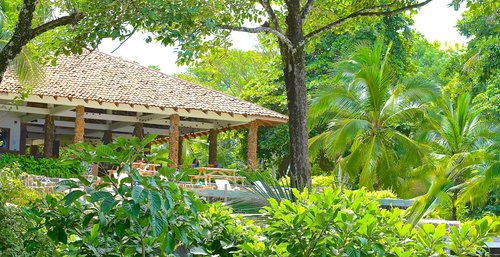 Santa Catalina Retreats Surf Yoga Wellness Panama