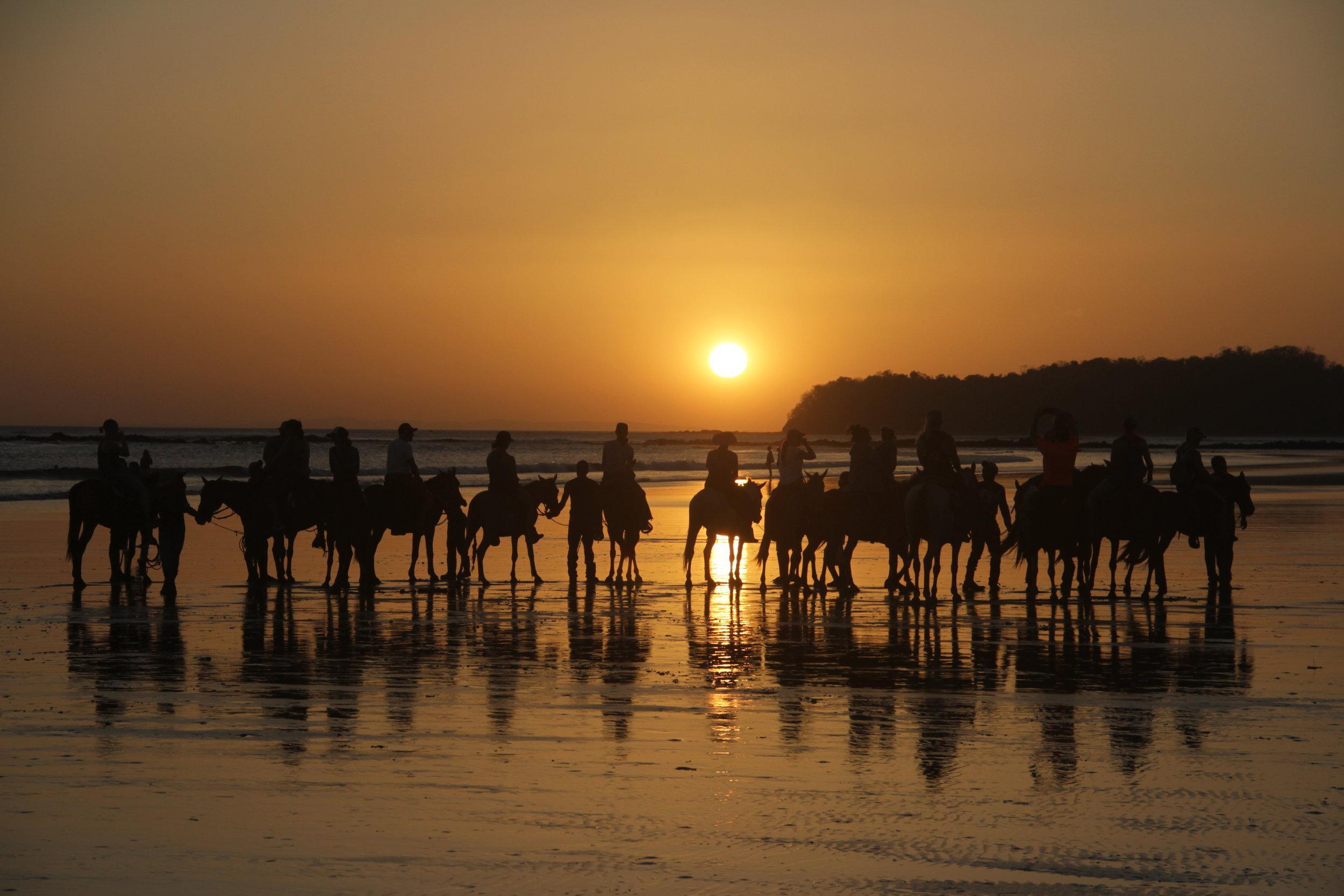 horse+riding_surf_yoga_catalina_retreats_panama+b (1).jpg