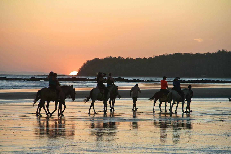 Santa Catalina Retreats Panama - Horse Riding