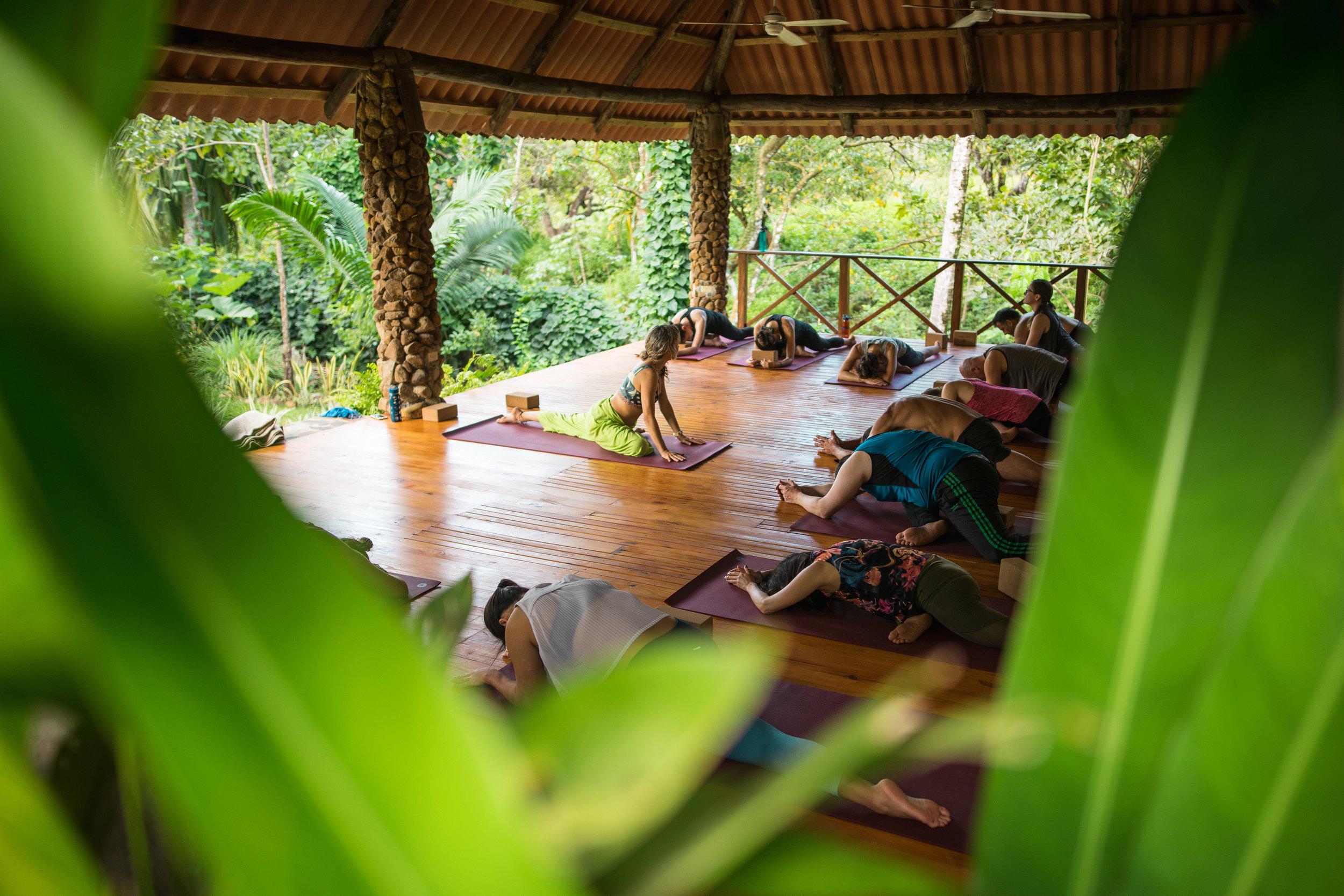 yoga retreats-5.jpg