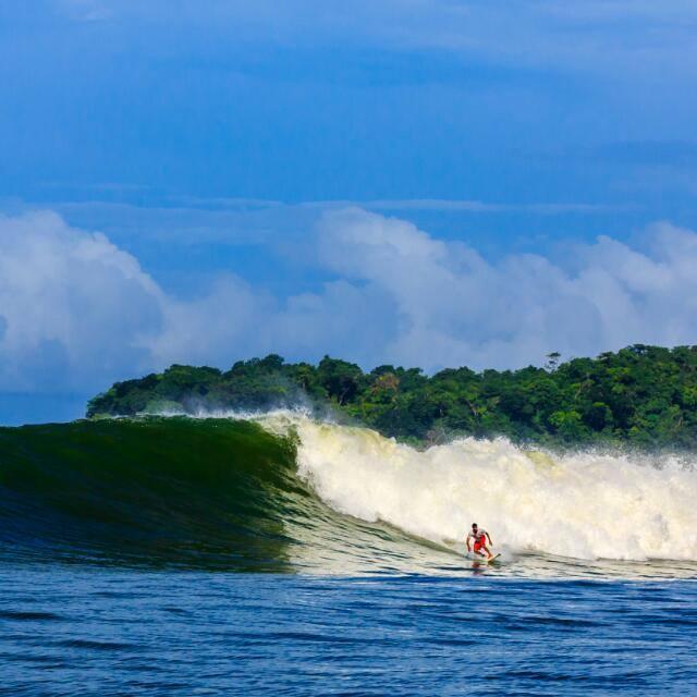 Kacey surf.jpeg