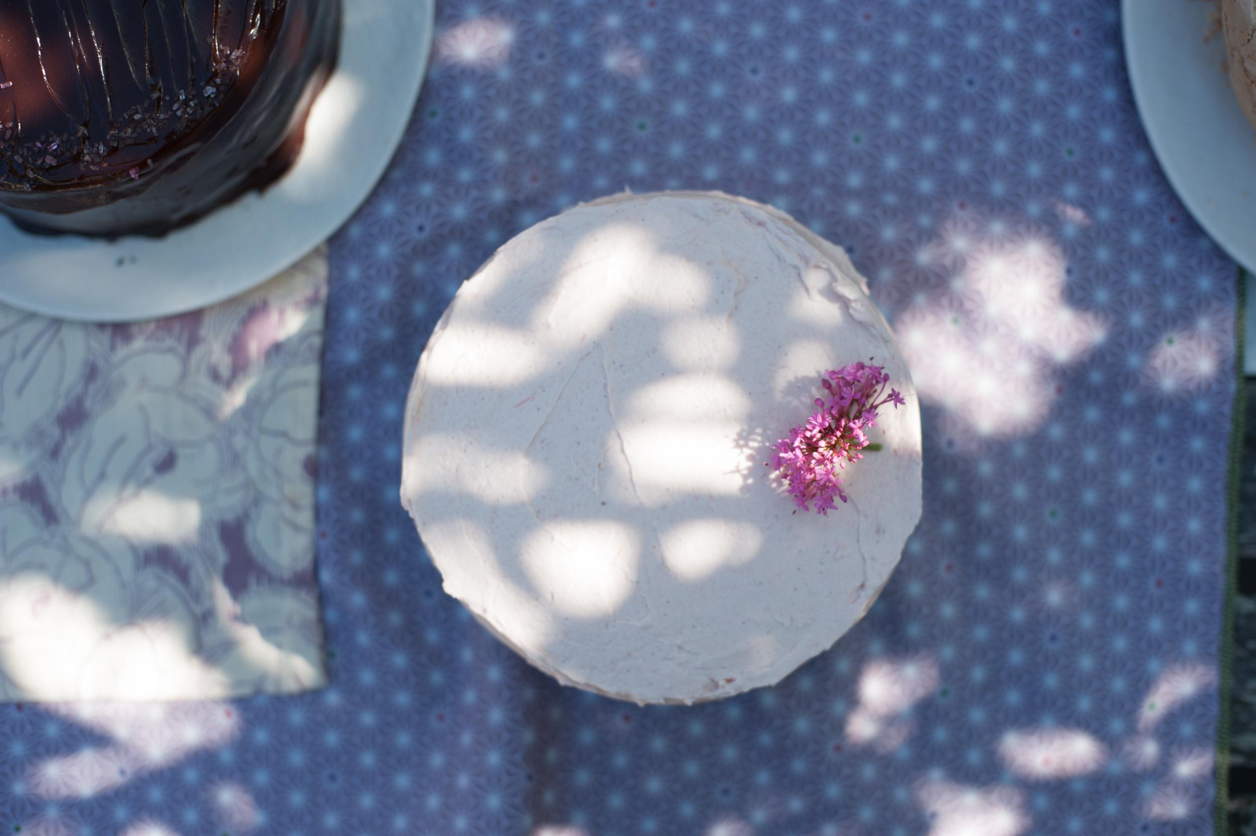 Spring Equinox + Rhubarb Cake!