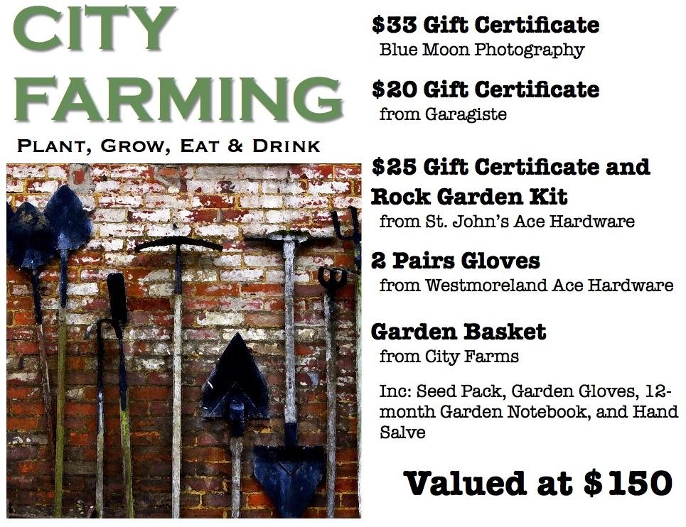 12-City Farming.jpg