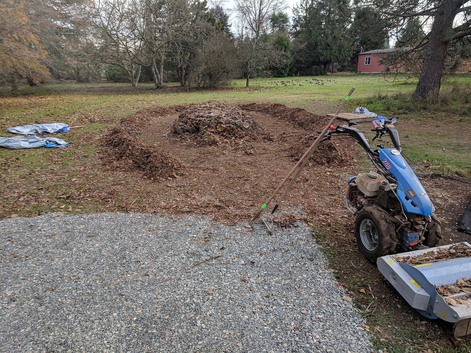 Donated leaves were mulched with a borrowed mower.