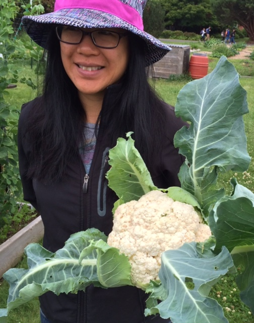 A stellar harvest from the brassica beds - photo courtesy of John Jordan