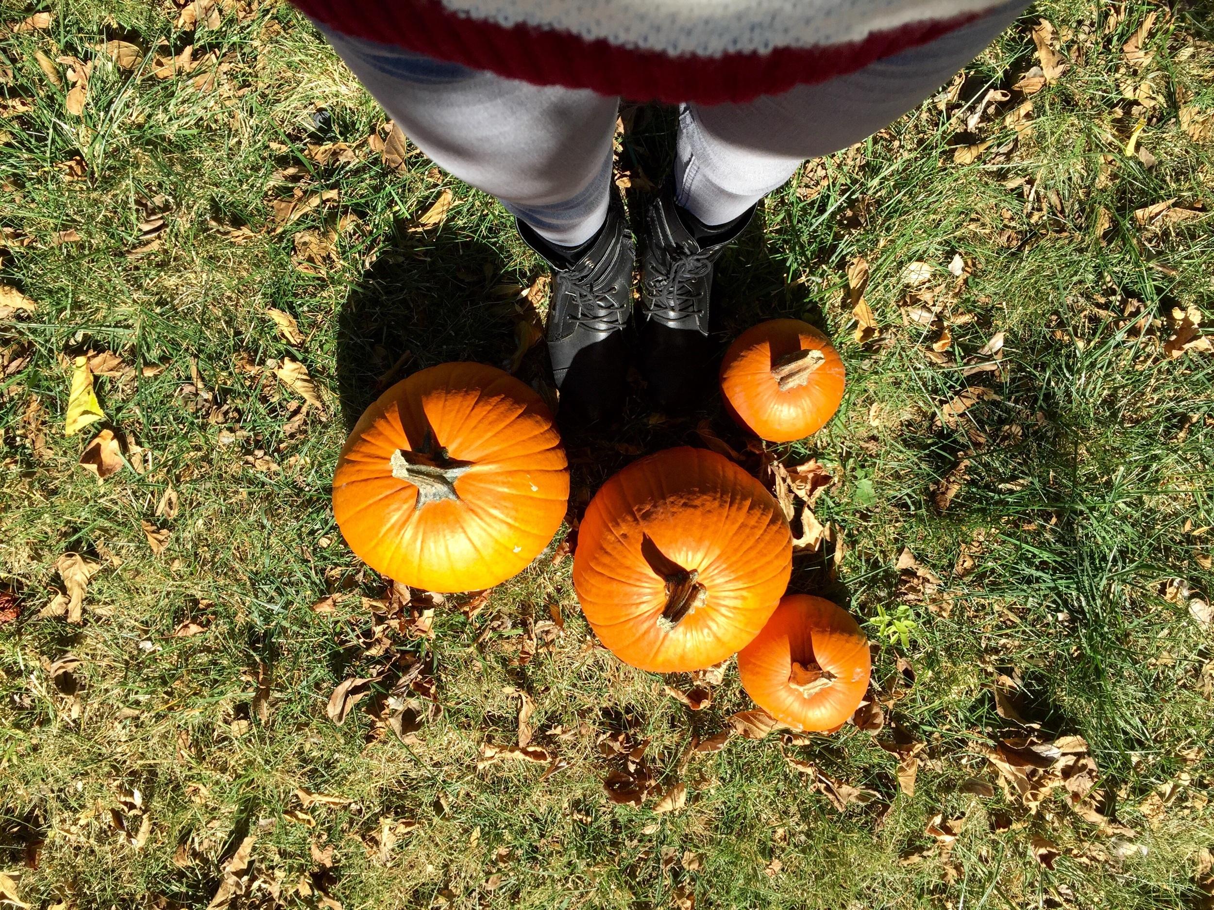 Halloween and craving Pumpkins is always an October FAvorite