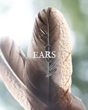 EARS.jpg