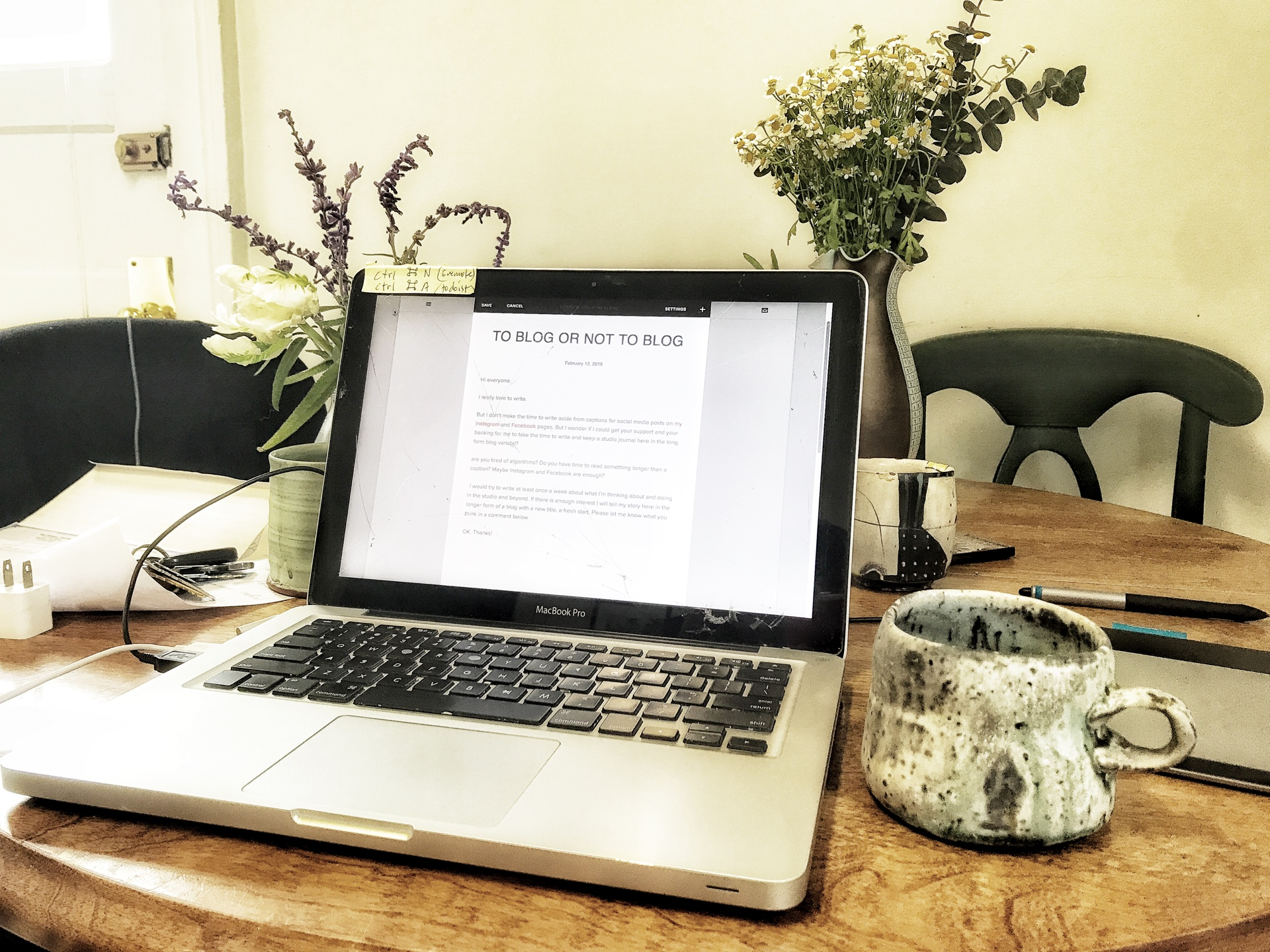 blogging in Petaluma with a  Perry Haas  mug