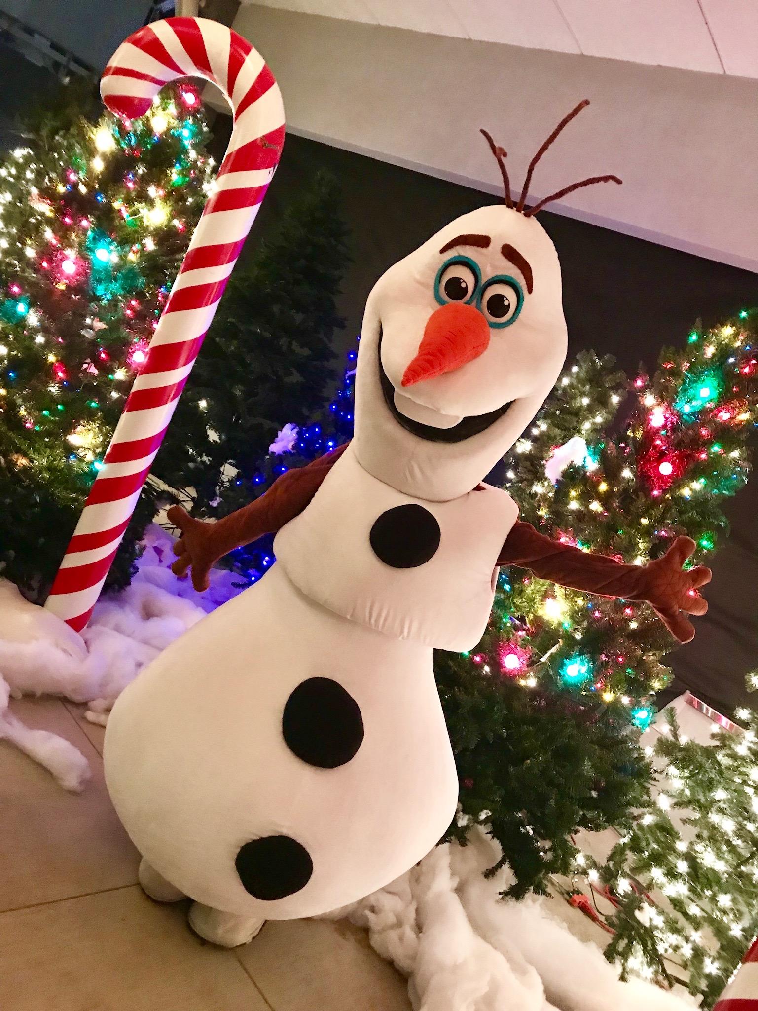 Happy Snowman  Entertainment