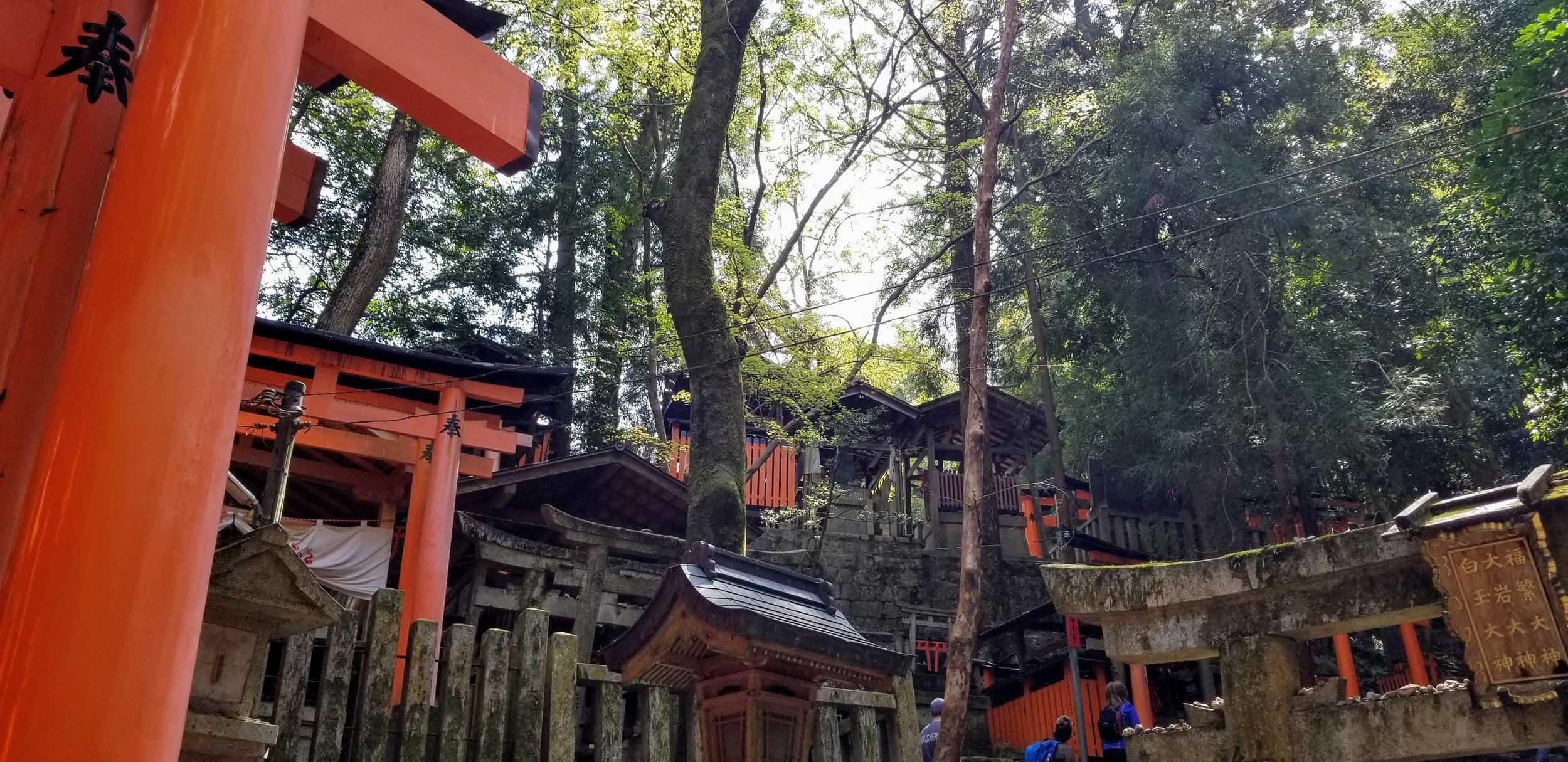 """This was the view after turning a corner. It looks like a small village. On closer approach, each little """"hut"""" is a different shrine."""