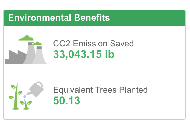 ENVIRONMENTAL IMPACT BY A SINGLE PLANT / YEAR