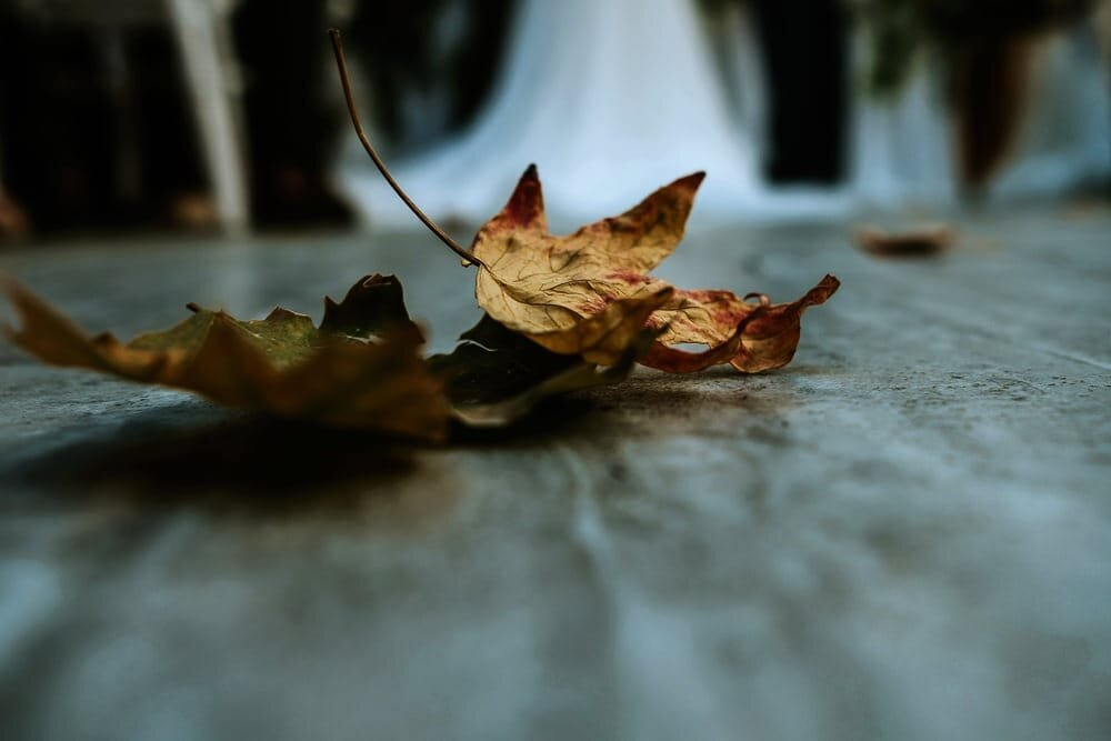 Winstanley-house-Wedding-Best-Leicestershire-Wedding-Photographer-00096.jpg