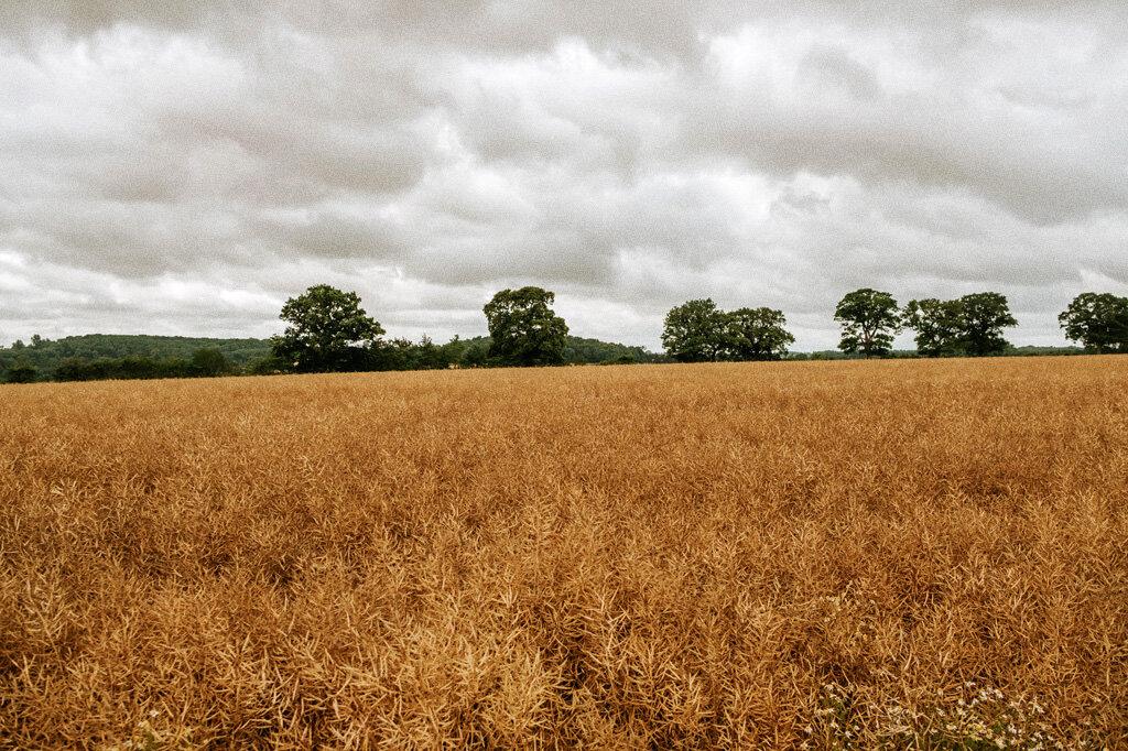 swallows-nest-warwickshire-wedding-photographer-00002.jpg