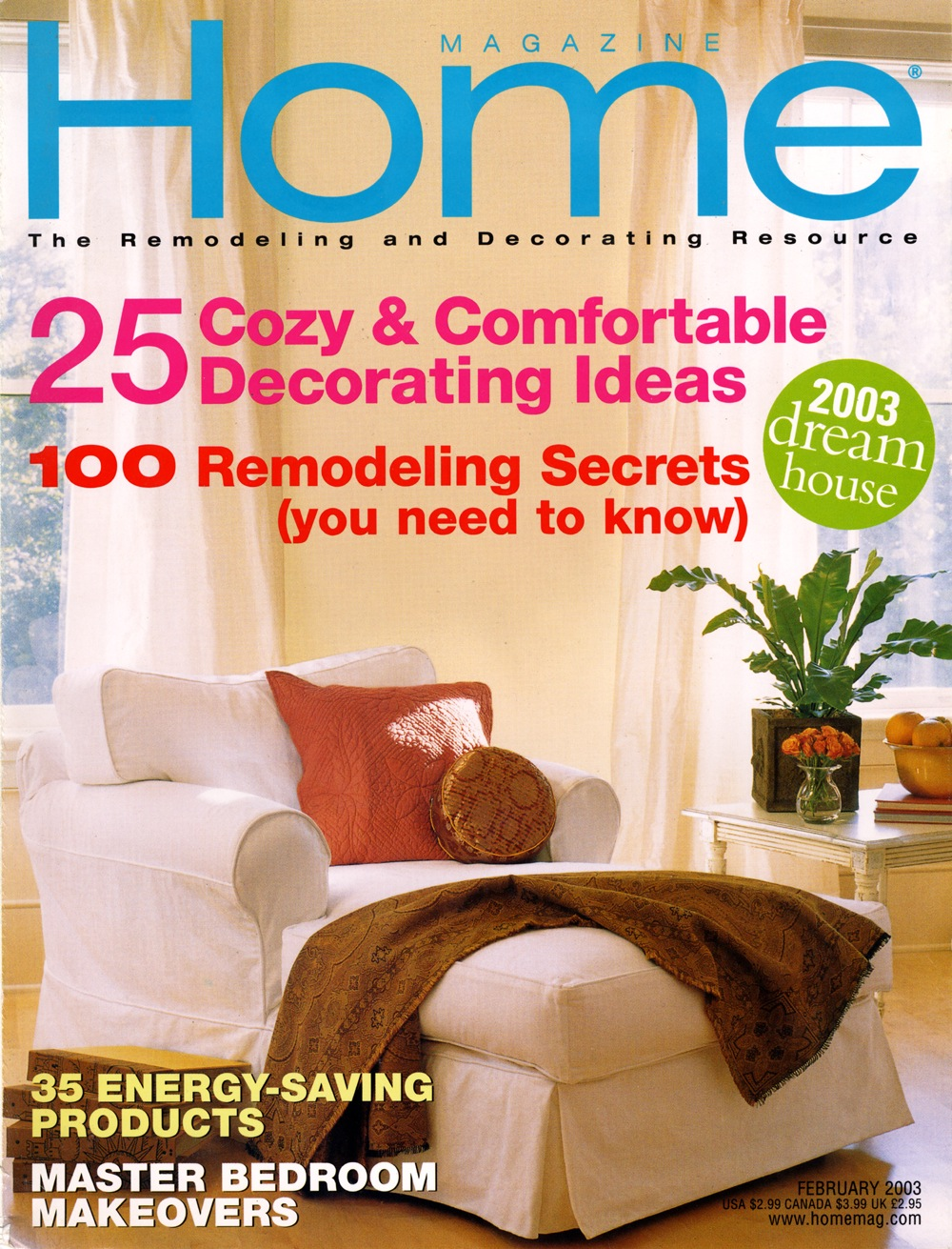 Home Magazine - Painting Primer - Cover.jpg