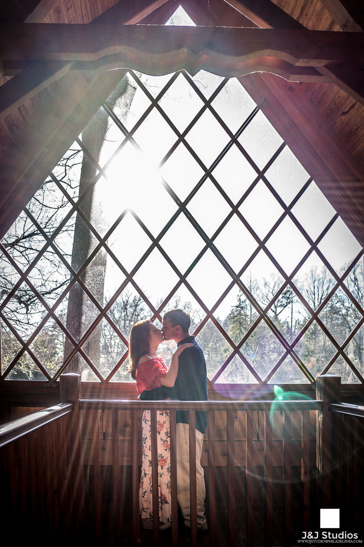 longwood-gardens-treehouse-proposal