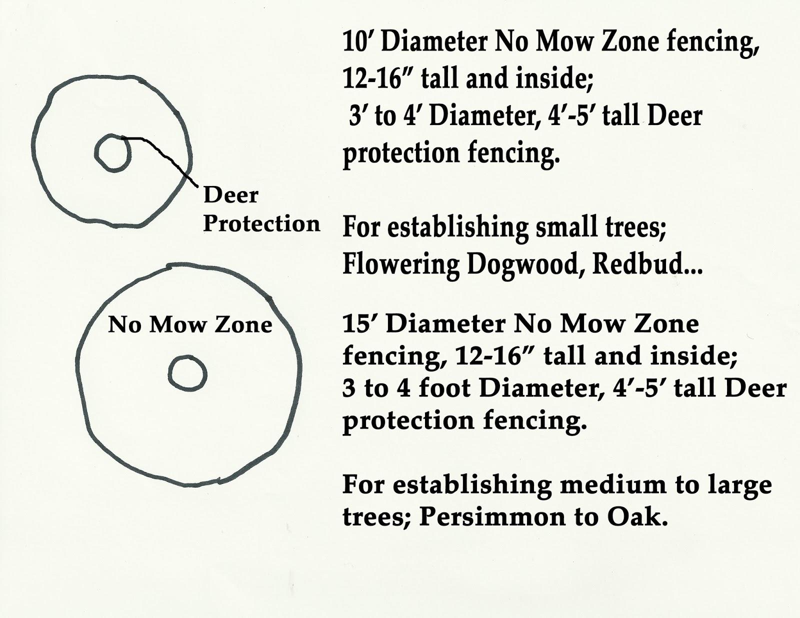 Root Zone Management Diagram.jpg