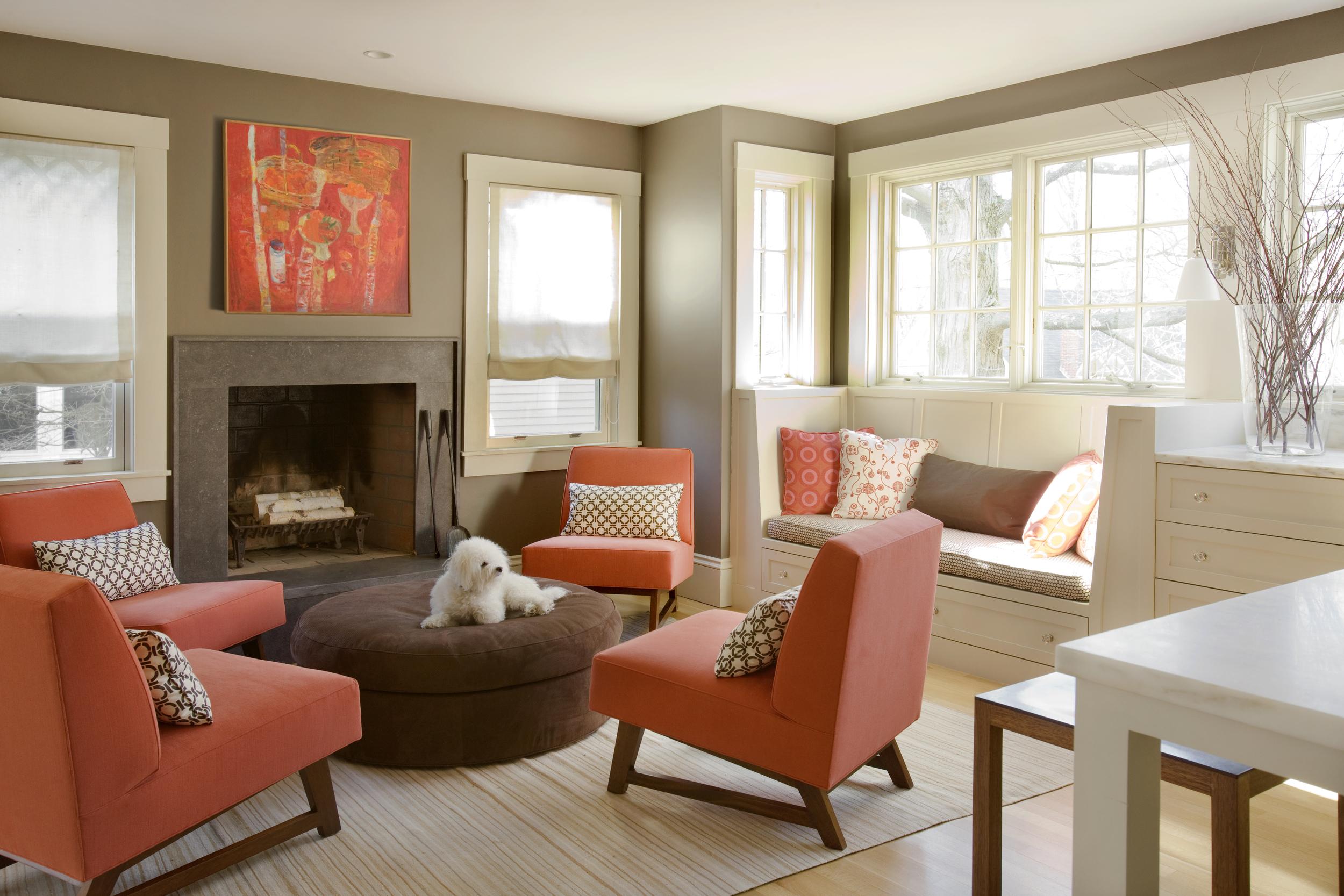 DNE Christine Lane Livingroom with Dog 2.jpg