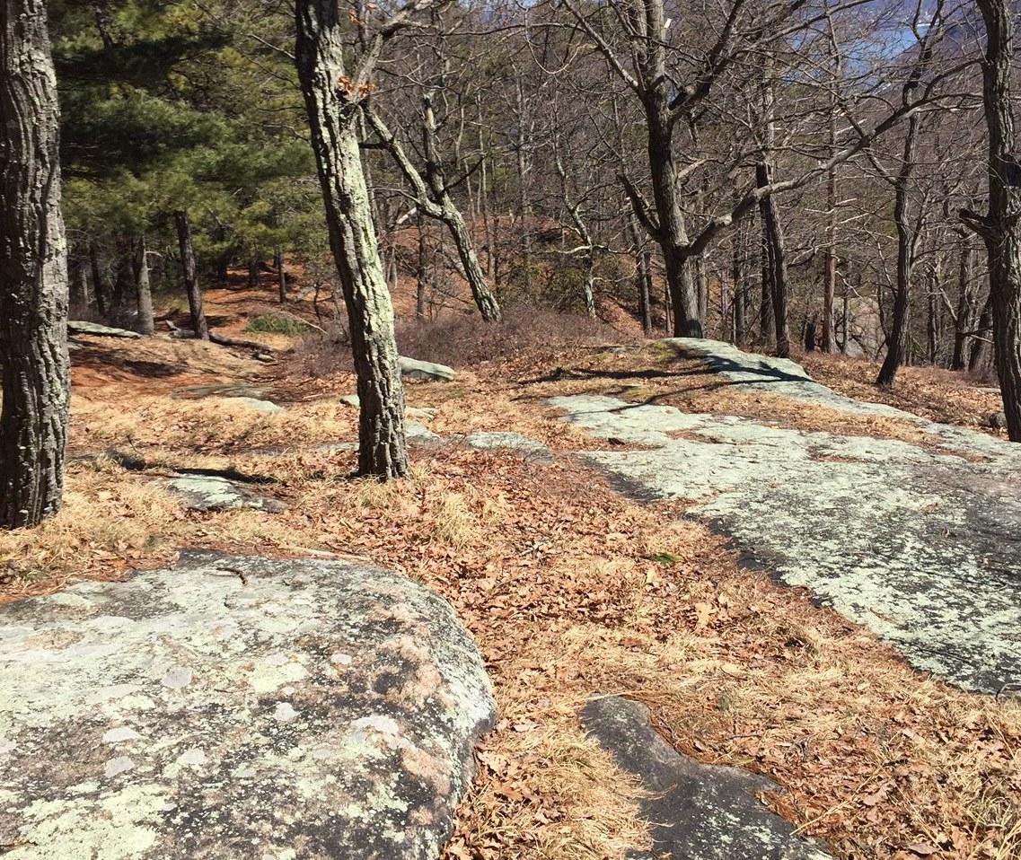trail_ratings_2_bear_mountain