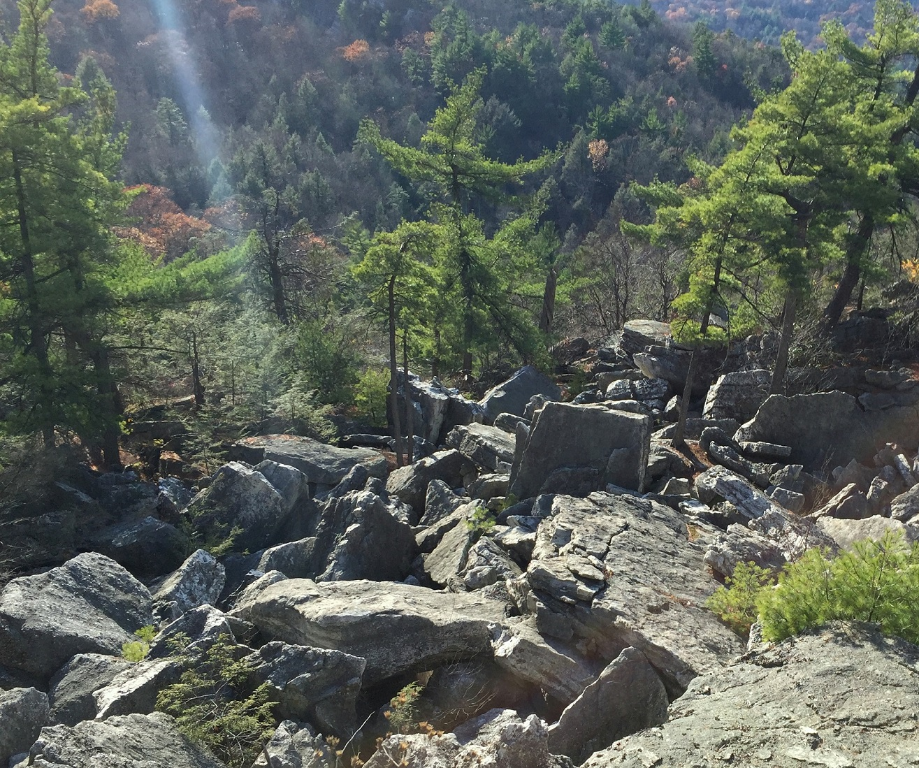 trail_ratings_5_mohonk