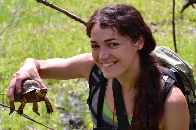 Hike NY Kali Bird with Smiling Box Turtle