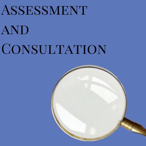 assessment (4).jpg
