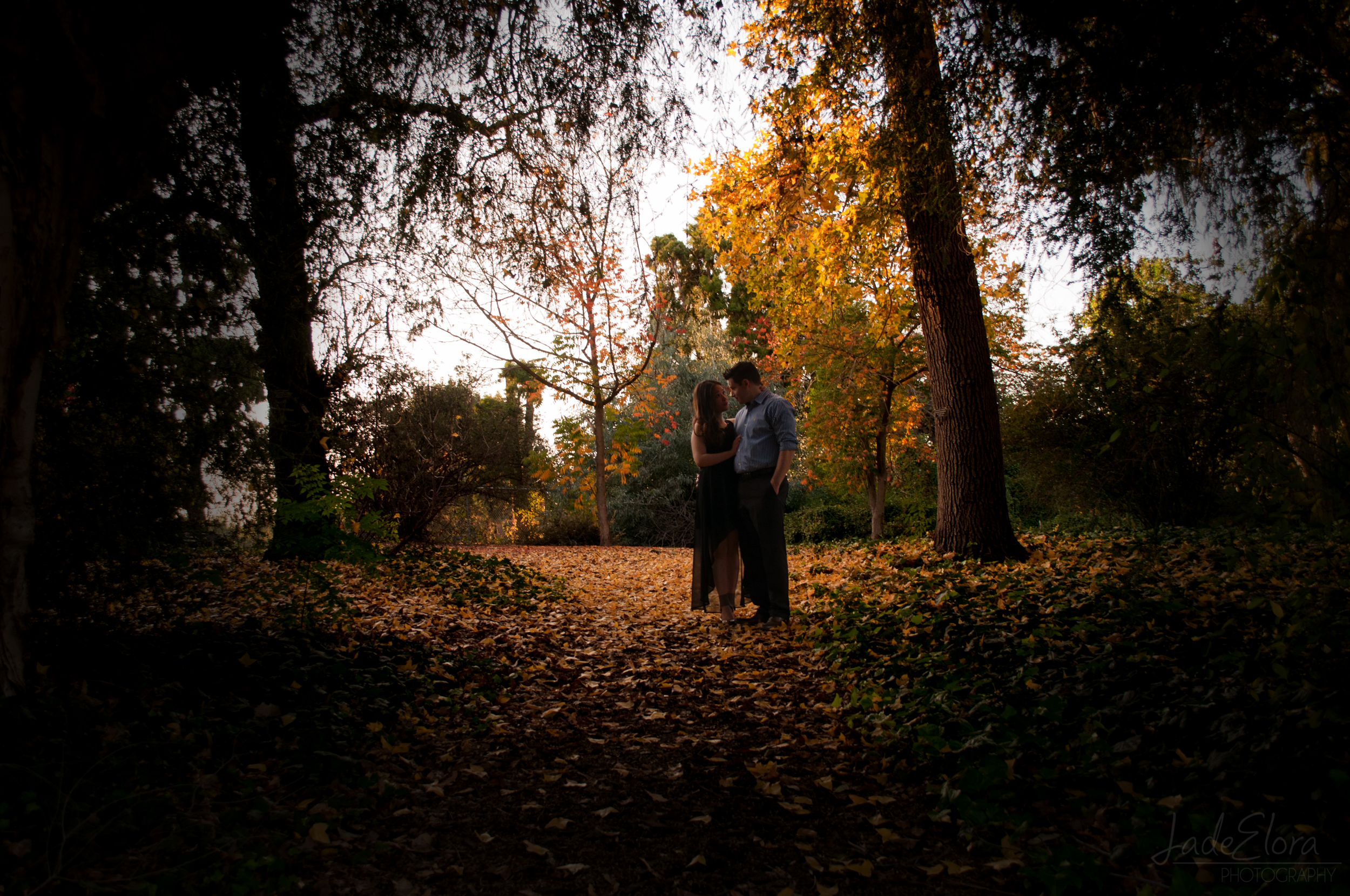 Fall Engagement at Los Angeles Arboretum