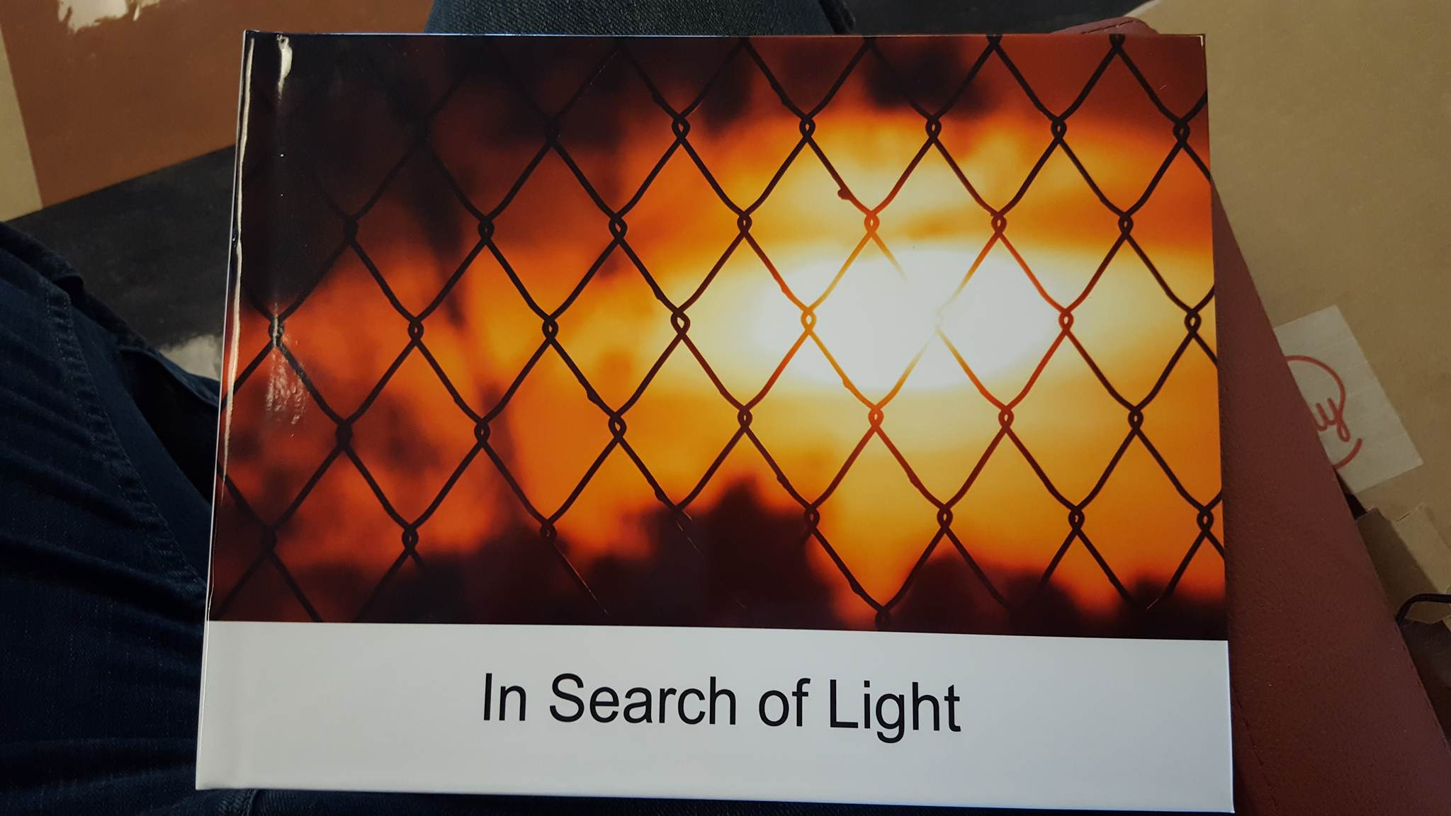 The Cover of In Search of Light