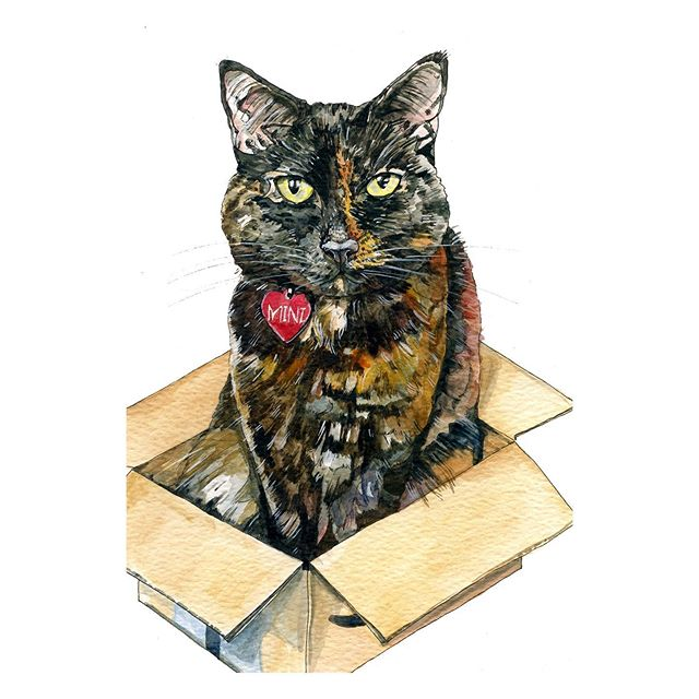 I hope you are all as happy as a kitty in a box today! What is it with cats and boxes?! Our house is forever full of boxes for the kitties to play in, none can be thrown away until they have been destroyed by tiny paws! . . . #catsofinstagram #petportrait #petpawtrait #catinabox #illustration #watercolourart #yorkshireartist #ukillustrator