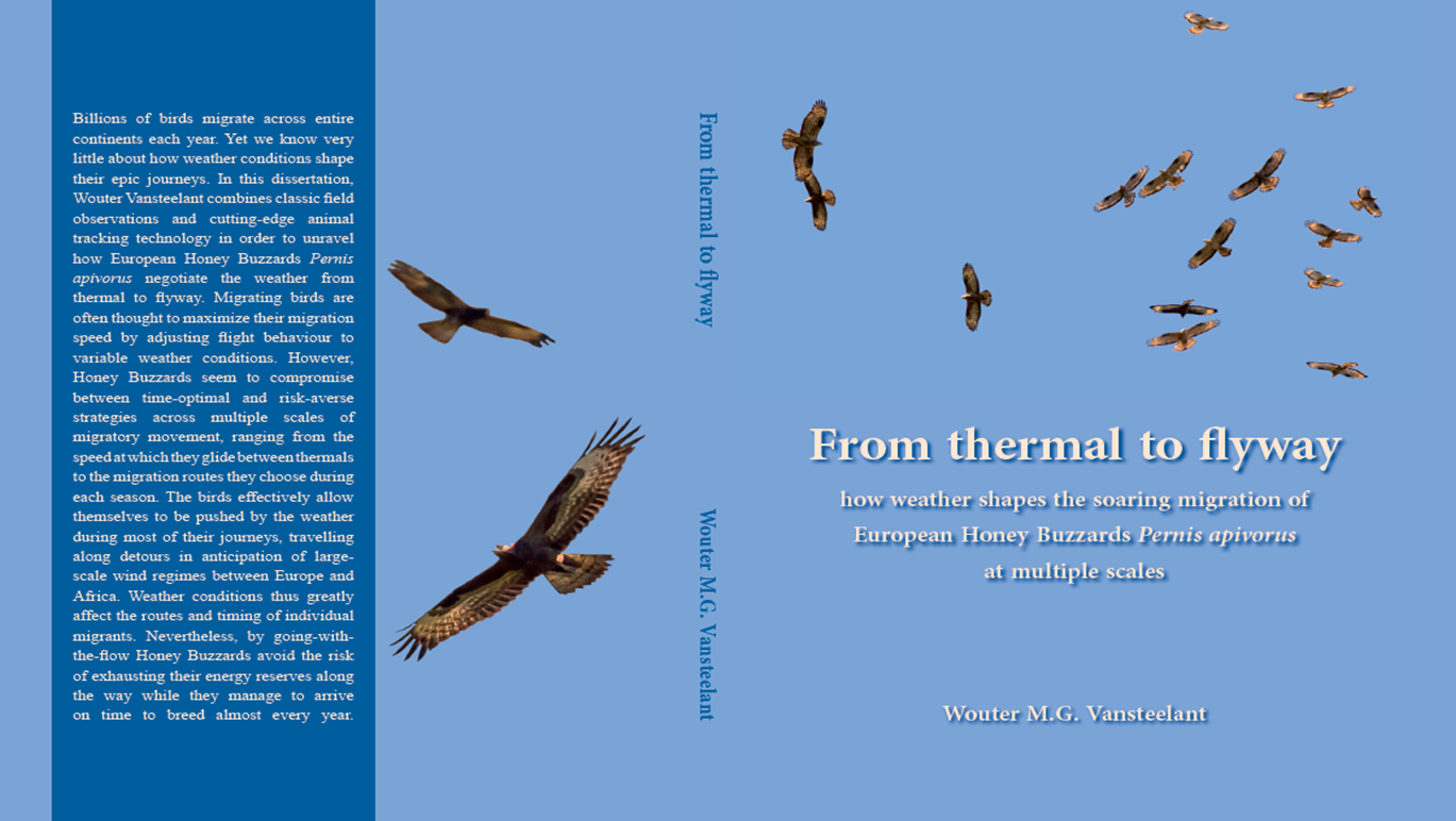 Vansteelant W. 2015 From thermal to flyway: how weather shapes the soaring migration of European Honey Buzzards Pernis apivorus at multiple scales. Ph.D. Thesis. University of Amsterdam, Netherlands. ISBN: 9789491407253