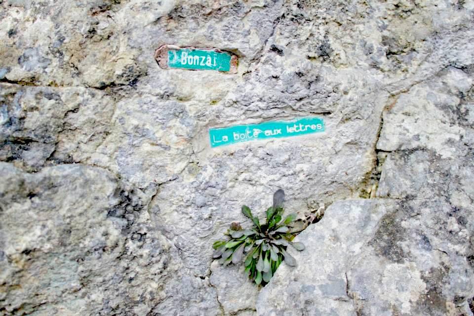 Avec des roches