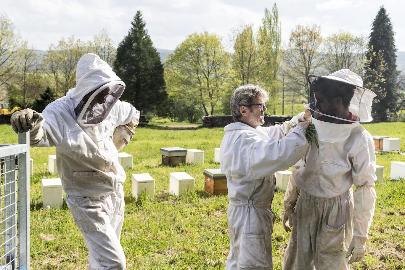 Le rucher Creusois-62.jpg