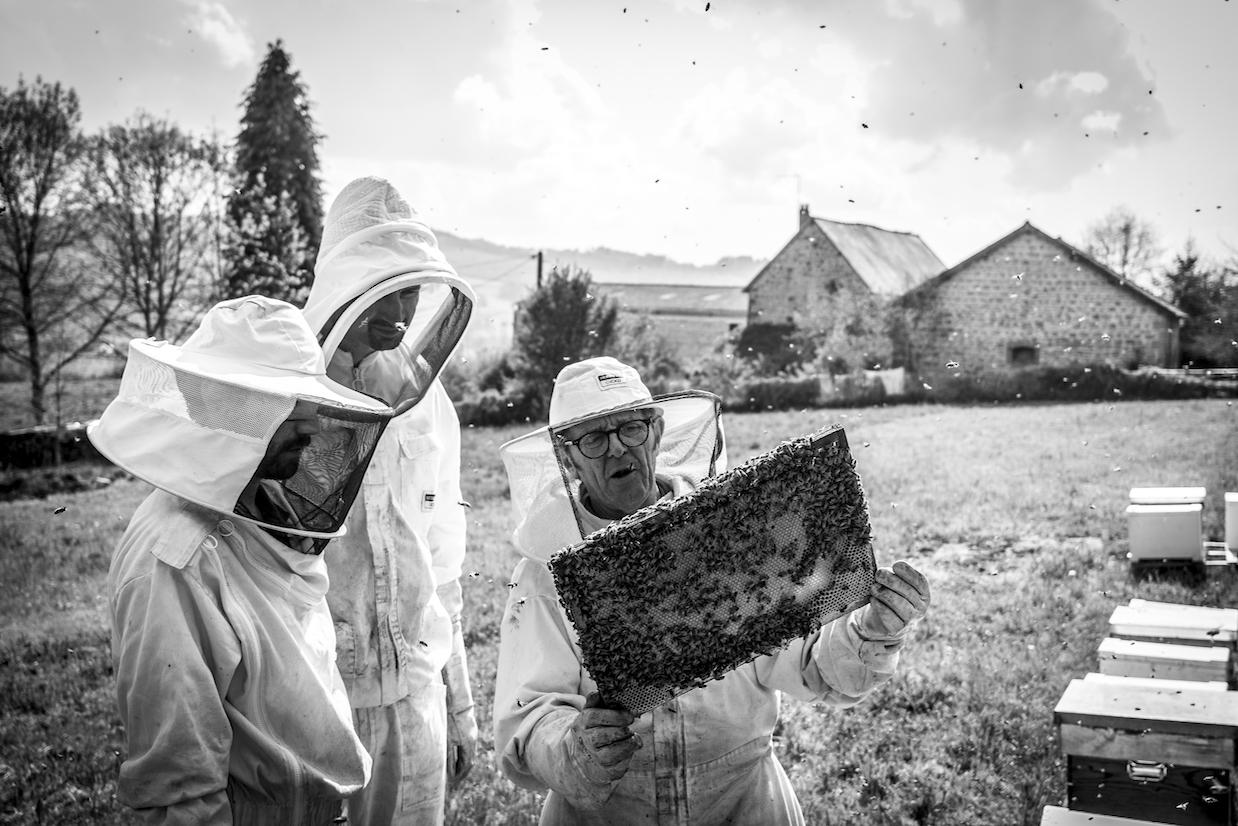 Le rucher Creusois-63.jpg