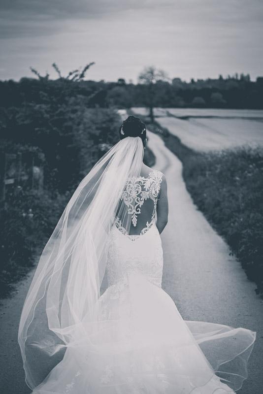 Swancar Farm Wedding (95).jpg