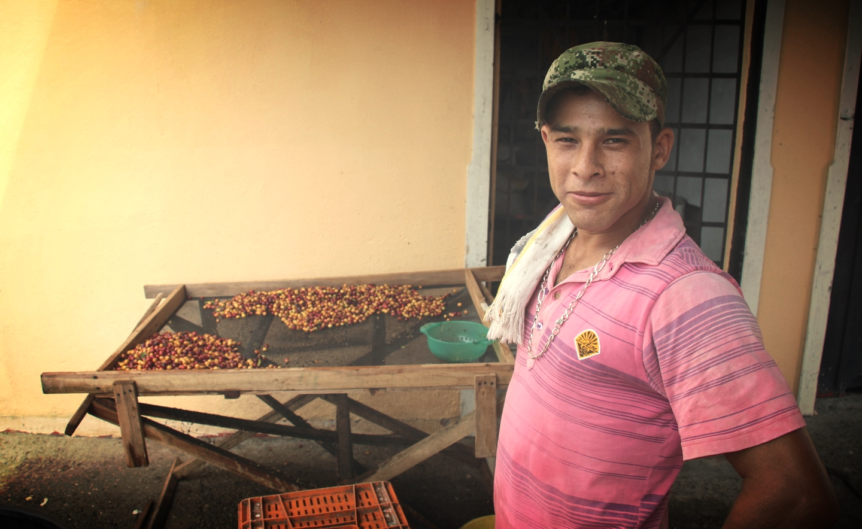 coffee bean selection at Don Danilo's finca