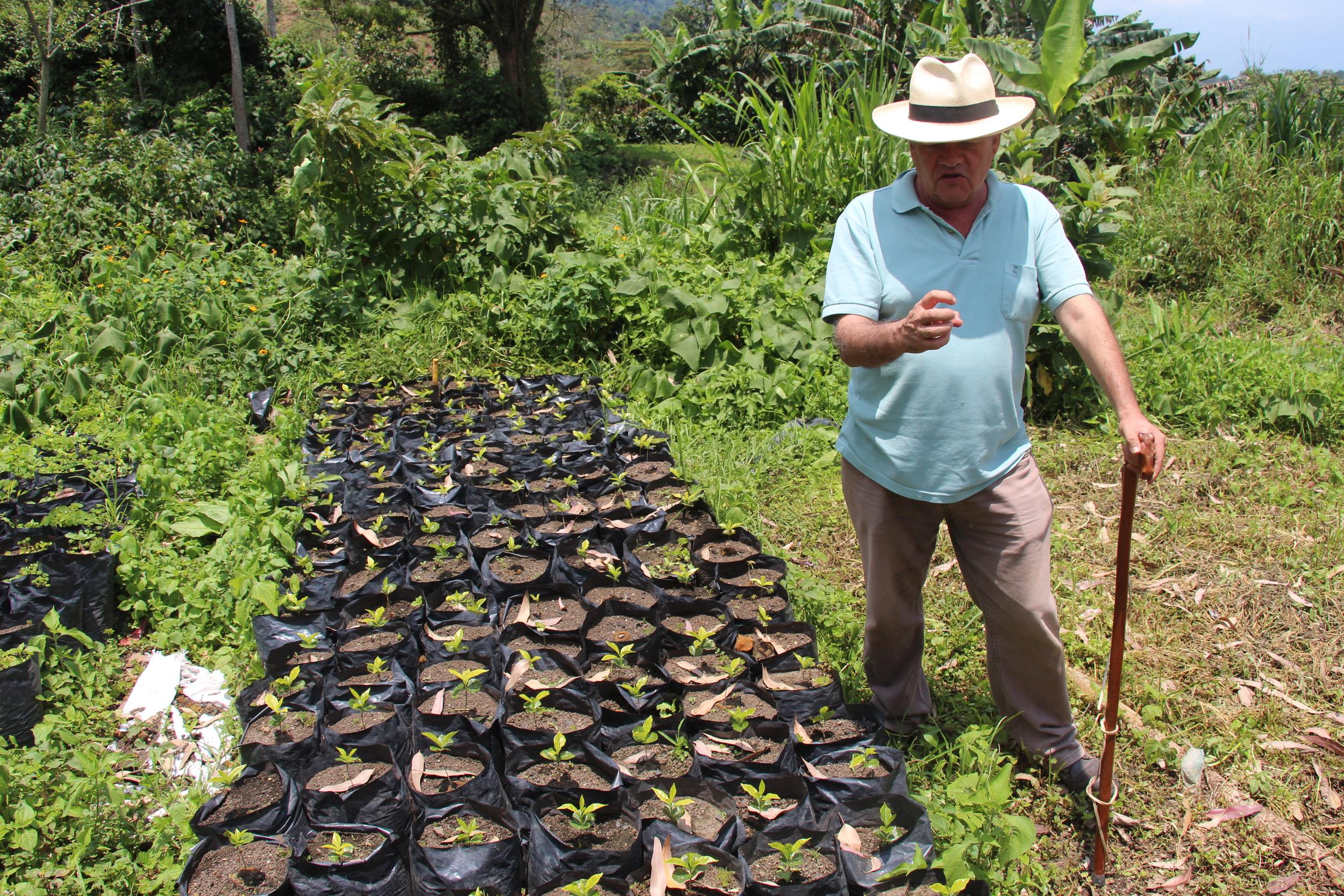 Orlando discusses coffee planting