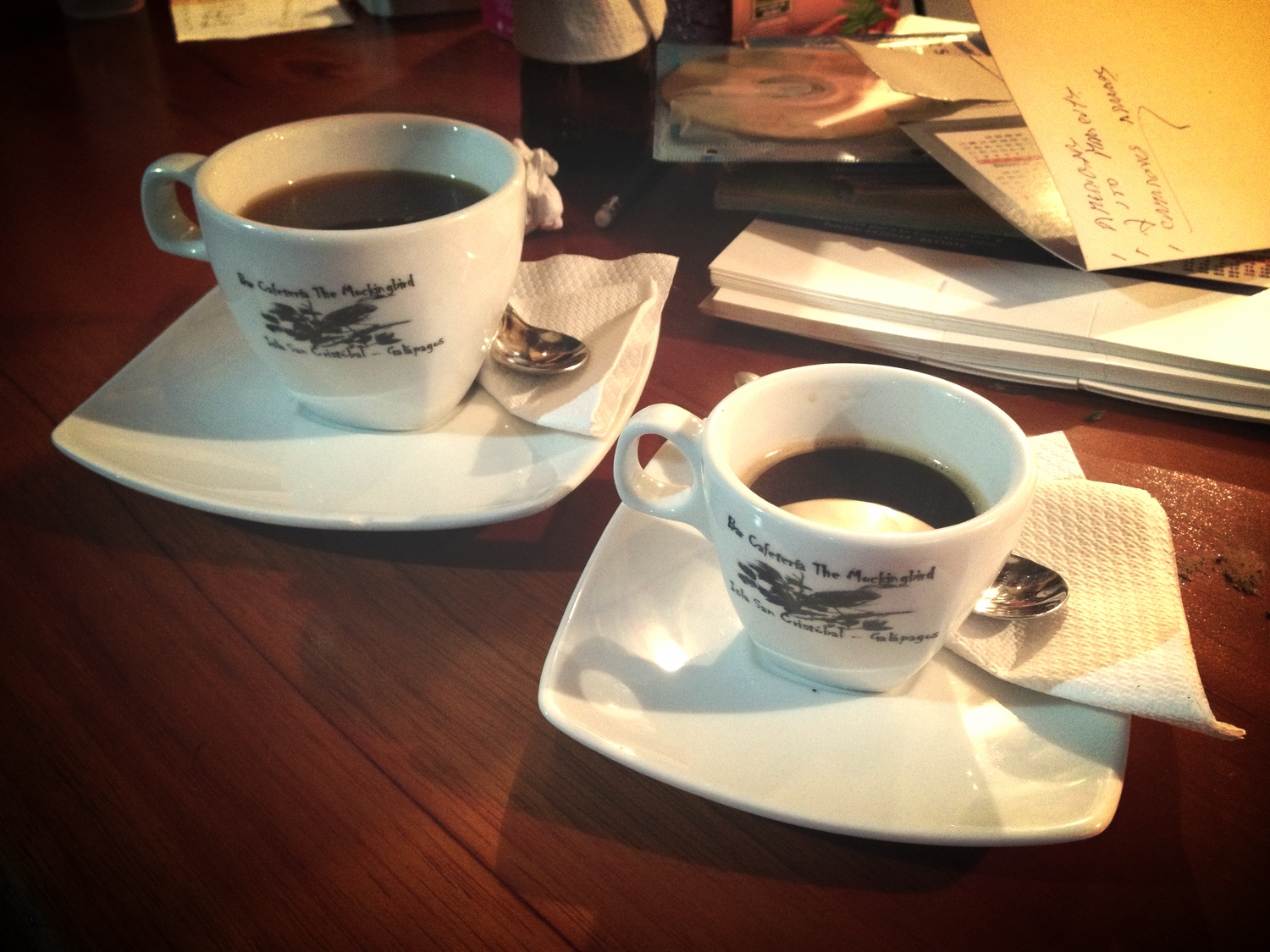 Coffee tasting at the Mockingbird