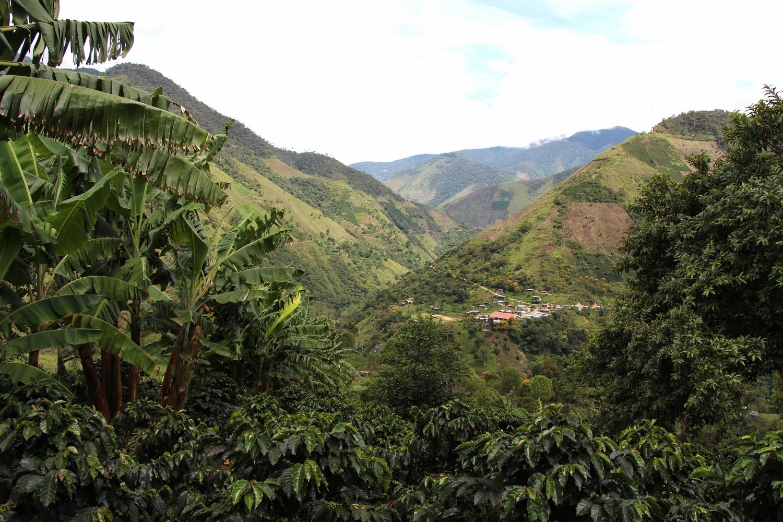 Amazing view from Finca Buenavista
