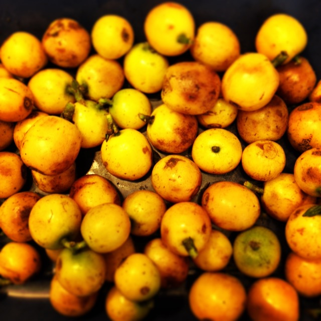 Yellow Bourbon Cherries