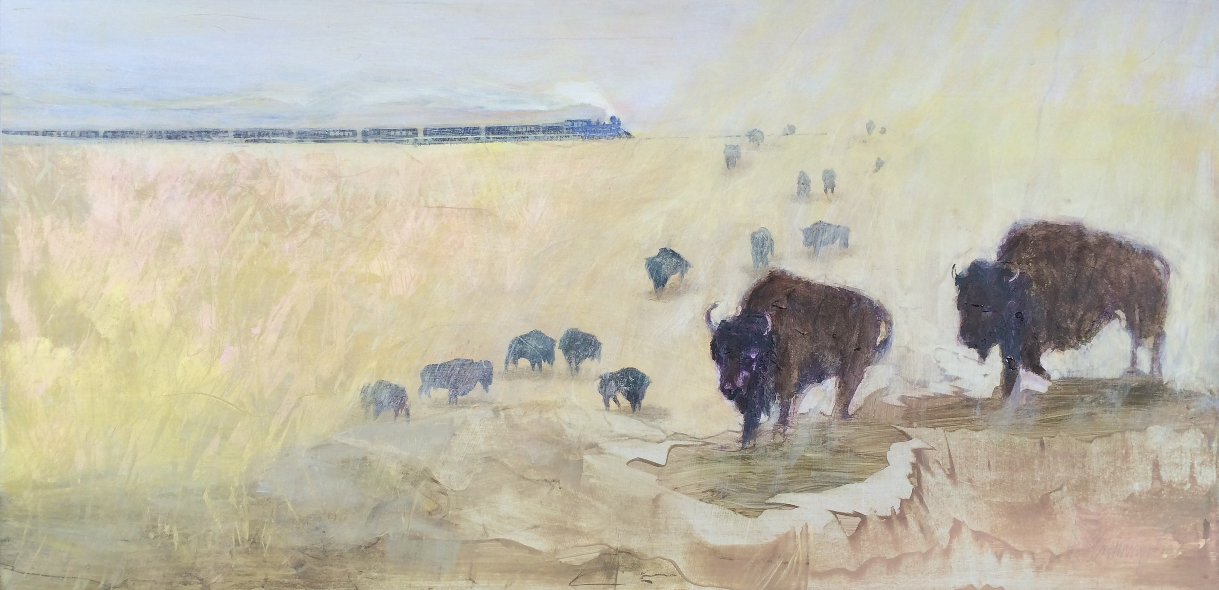 The Train The Buffalo I