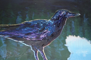 Sunrise Crow
