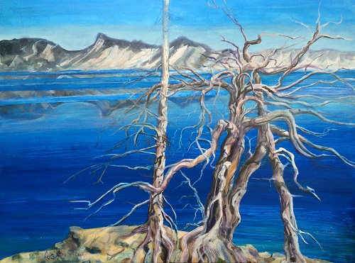 Crater Lake Trees