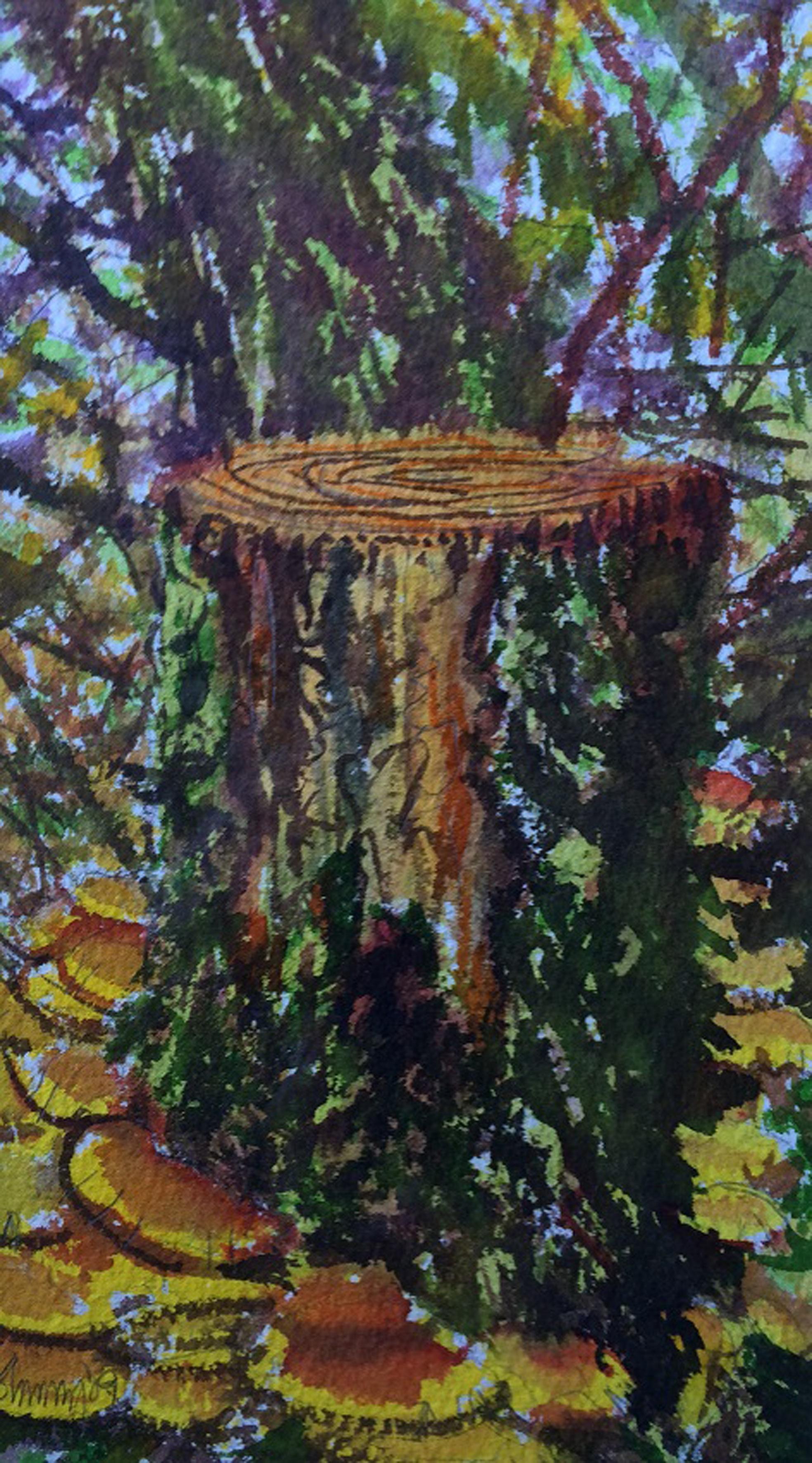 Fir Stump Fungus